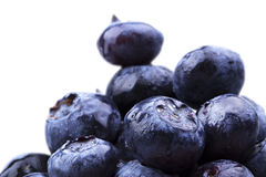 Blueberries with water drops Royalty Free Stock Photos