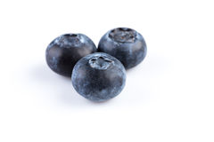 Blueberries on white background Stock Image
