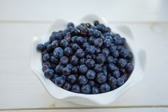 Blueberries on a white background summer Stock Images