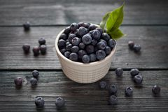 Blueberries in white bowl. With leaf royalty free stock photos