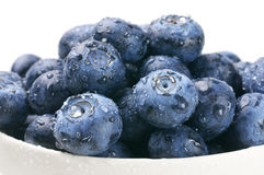 Blueberries in white bowl Royalty Free Stock Photography