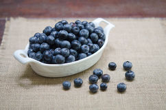 Blueberries in  White bowl Stock Image