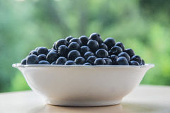 Blueberries in white bowl. With natural background Royalty Free Stock Images