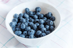Blueberries in white bowl Royalty Free Stock Image