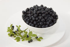 Blueberries in a white bowl on a white plate Royalty Free Stock Photos