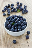 Blueberries in the white bowl Royalty Free Stock Image