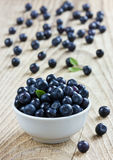 Blueberries in the white bowl on a wood rustic background Stock Images