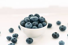 Blueberries in a white ceramic bowl on a white background.  stock image