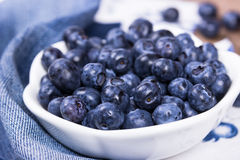 Blueberries in a white ceramic bowl Stock Image
