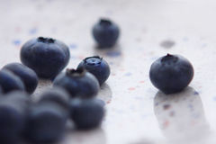 Blueberries on the white ceramic plate Royalty Free Stock Image
