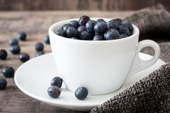 Blueberries in a white cup on brown cloth Royalty Free Stock Photo