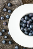 Blueberries in a white cup on brown cloth Stock Photos