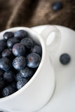 Blueberries in a white cup on brown cloth Royalty Free Stock Images
