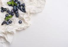 Blueberries in white paper with mint Stock Image