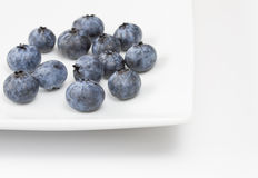 Blueberries on a white plate Royalty Free Stock Photo