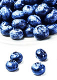 Blueberries on white plate isolated on white background with cop Royalty Free Stock Image