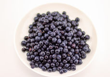 Blueberries in a white plate Royalty Free Stock Image