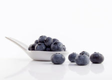 Blueberries on white spoon Stock Photography