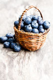 Blueberries   in wicker basket on rustic wooden background Royalty Free Stock Photography
