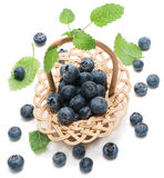 Blueberries in wicker basket Stock Images