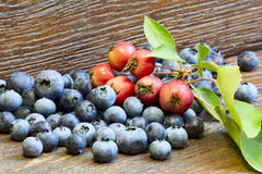 Blueberries and wild apples Royalty Free Stock Images