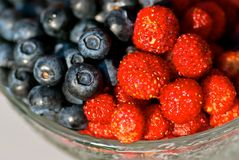 Blueberries and wild strawberries stock photography