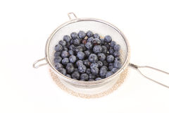 Blueberries in Wire Strainer Stock Photography