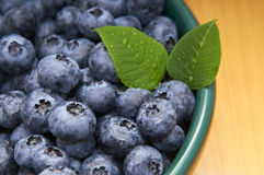 Blueberries from the wood in a bowl Royalty Free Stock Images