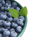 Blueberries from the wood in a bowl isolated Stock Photos