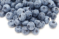 Blueberries from the wood isolated Royalty Free Stock Photos
