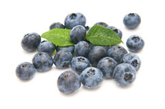 Blueberries from the wood isolated Stock Photo