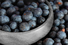 Blueberries in a wooden bowl Stock Image