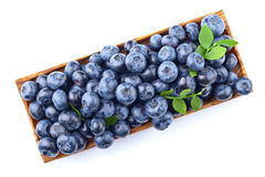Blueberries in wooden dish isolated on white Stock Photography