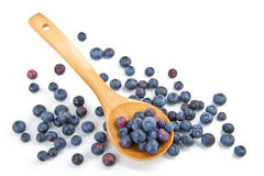 Blueberries in a wooden spoon. The composition of the blueberries in a wooden spoon Royalty Free Stock Image
