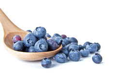 Blueberries in a wooden spoon. The composition of the blueberries in a wooden spoon Stock Photos