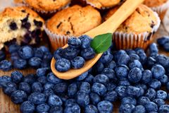Blueberries on wooden spoon Stock Photos