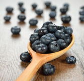 Blueberries in a wooden spoon Stock Images