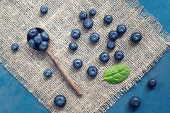 Blueberries in a wooden spoon and scattered on a napkin from sacking. Top view,flat lay stock images