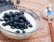 Blueberries and yogurt Stock Images