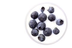 Blueberries in yogurt Stock Photography