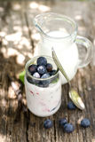 Blueberries and yogurt Royalty Free Stock Image