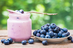 Blueberries yogurt in jar and saucer with bilberries Stock Image