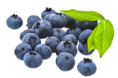 Blueberry. And Green Leafs Isolated royalty free stock photos