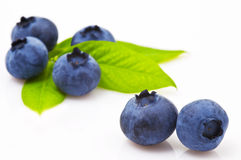 Blueberry. Isolated On White Background royalty free stock image