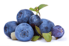 Blueberry. Blueberries with leaves isolated on white background Royalty Free Stock Photos