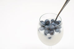 Blueberry. Grass of blueberries with yoghurt stock images