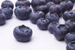 The blueberry Stock Image