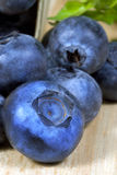 Blueberry. A single large ripe blueberry on wood cutting board with additional blueberries and leaves softly blurred in background Stock Image