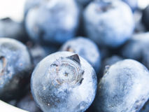 Blueberry. Fresh bluberries from local market on white background. Blueberries contain anthocyanins,  and various phytochemicals, which possibly have a role in Royalty Free Stock Images
