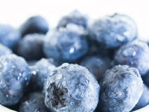 Blueberry. Fresh bluberries from local market on white background. Blueberries contain anthocyanins,  and various phytochemicals, which possibly have a role in Royalty Free Stock Photo